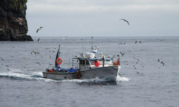 Poachers targeted at sea